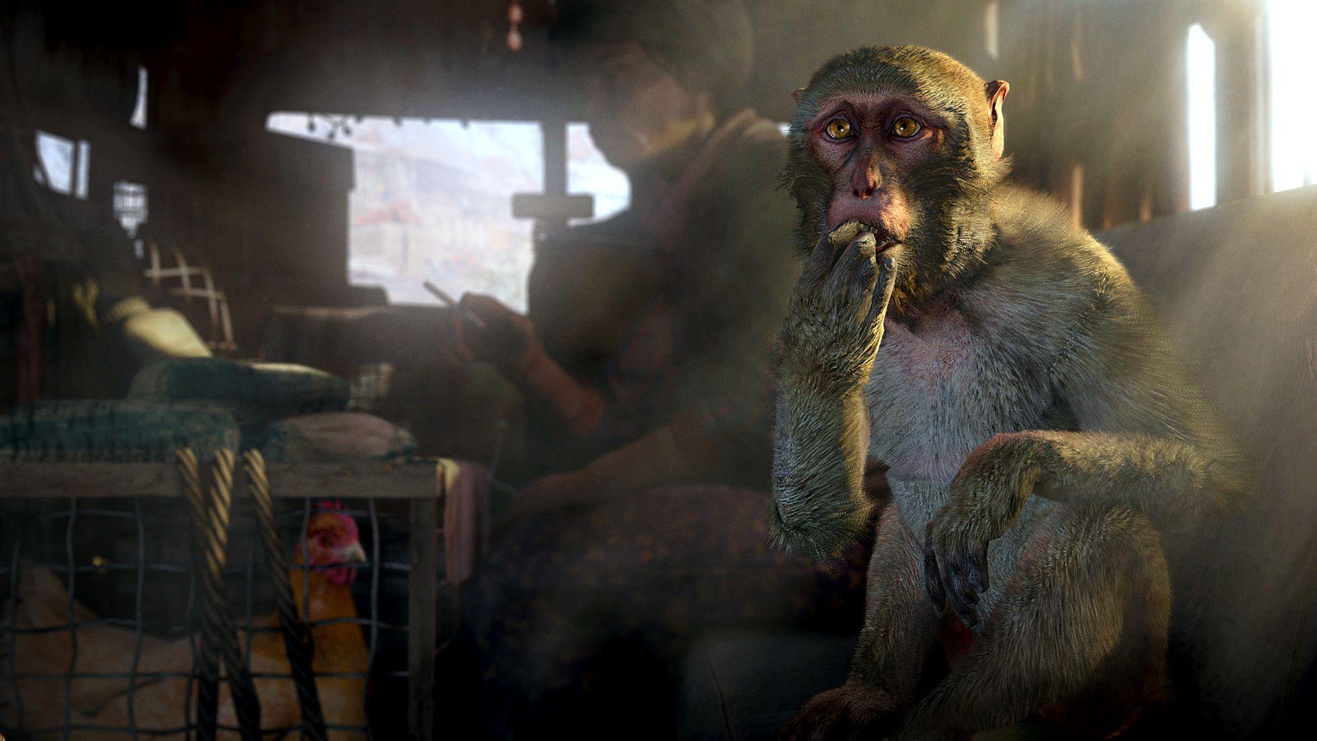 Скриншот №2 к Far Cry 4